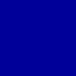 L'illustre Goéland